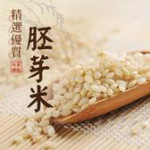 紅藜阿祖.紅藜胚芽米輕鬆包(300g/包,共6包)﹍愛食網