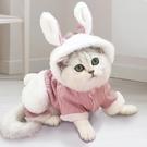 貓咪衣服小奶貓藍白英短布偶貓貓寵物用品冬天保暖可愛四腳秋冬裝 樂活生活館