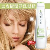 美傑士皂皮樹潔淨洗髮精400ml 49401 ~美容美髮美甲新秘 材料~