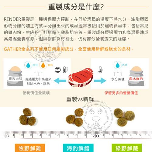 【培菓平價寵物網】gather卡樂》有機天然糧綠野鮮蔬成犬配方-6磅2.72kg