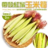 【果農直配-全省免運】台灣紅鬚帶殼玉米筍【3台斤±10%】