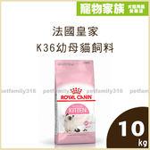 寵物家族-【送法國皇家軌道溜溜球*1】法國皇家K36幼母貓飼料10kg(4-12個月幼貓適用)