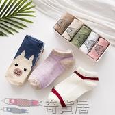 襪子女短襪船襪女淺口韓國可愛夏季薄款純棉隱形日系低幫運動襪套