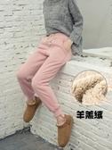 運動褲女2020新款冬季加絨加厚衛褲羊羔絨寬鬆顯瘦休閒小腳哈倫褲