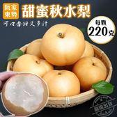 【果之蔬-全省免運】東勢甜蜜秋水梨12顆禮盒X1盒【220克±10%/顆】