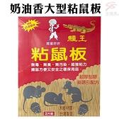 金德恩 台灣製造 1盒2片 鱷王奶油香味大型粘鼠板