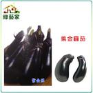 【綠藝家】G33.紫金圓茄(日本進口紫金...