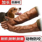 防咬手套 雙層牛皮加厚加長防咬手套養蛇手套防貓狗鼠寵物訓狗手套實驗手套 MKS交換禮物