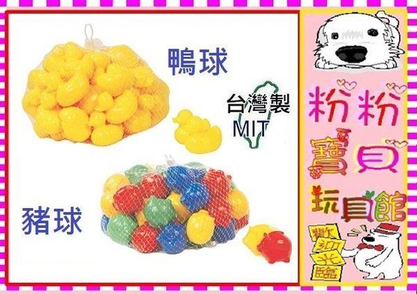 *粉粉寶貝玩具2館*可愛鴨子塑膠空心安全彩球 ~另有豬豬塑膠彩球~台灣製~50入/包