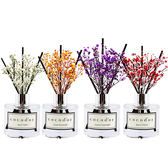 韓國 cocodor 滿天星花束室內擴香瓶(MINI)50mL ◆86小舖 ◆