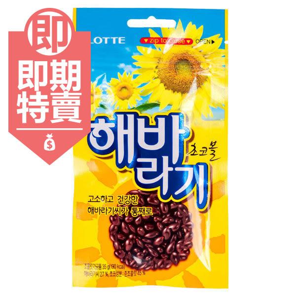 (即期商品)韓國 Lotte 樂天葵花子巧克力