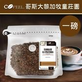 CoFeel 凱飛鮮烘豆哥斯大黎加牧童莊園中烘焙咖啡豆一磅【MO0055】(SO0065)