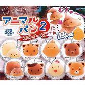 4款一組【日本正版】可愛動物麵包 捏捏吊飾 扭蛋 轉蛋 捏捏樂 軟軟 squishy 捏捏 - 454763