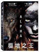 極地之王 DVD   OS小舖