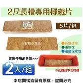 2尺長槽專用椰纖片5片/包--2入/組