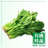 【有機認證生鮮時蔬】山菠菜 ( 250g /包)