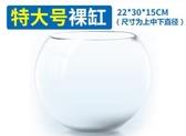 魚缸小型玻璃烏龜缸特大號圓形客廳桌面創意圓型烏龜缸水培金魚缸
