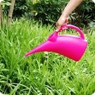 創意長嘴塑膠灑水壺澆水壺家用綠植盆栽噴水...