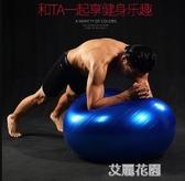 瑜伽球加厚防爆孕婦分娩專用平衡運動兒童健身球QM『艾麗花園』