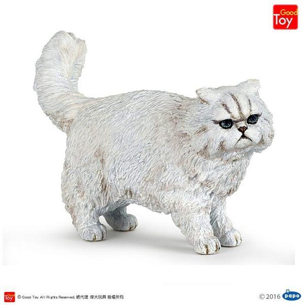 【Good Toy】法國 PAPO 54042 貓狗寵物 波斯貓 Persian cat