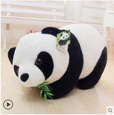熊貓公仔毛絨玩具黑白布偶抱枕抱抱熊大號玩偶娃娃生日禮物送女友「摩登大道」