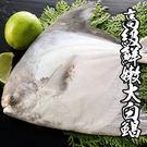 高級鮮嫩白鯧 *1尾組(500-600g±10%/尾 )(斗鯧)