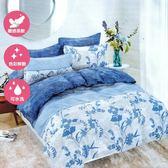 單人二件式床包+枕套組 舒適磨毛布#42