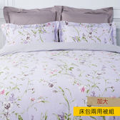 HOLA 碧翠絲天絲床包兩用被組 加大