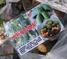 水果苗 ** 哈斯超Q酪梨 ** 4吋盆/高30-60cm/ 甜.纖維含量很高【花花世界玫瑰園】R