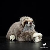 樹懶公仔 三趾樹懶毛絨玩具樹懶毛絨玩具 公仔禮物