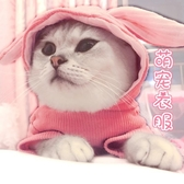 貓咪衣服可愛萌兔耳朵帶帽秋冬裝小貓貓保暖英短狗狗幼貓寵物用品   米娜小鋪