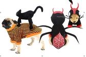 新品狗衣服貓衣狗狗衣服寵物衣服衛衣寵物用品卡通春秋冬裝寵物用品寵物服飾