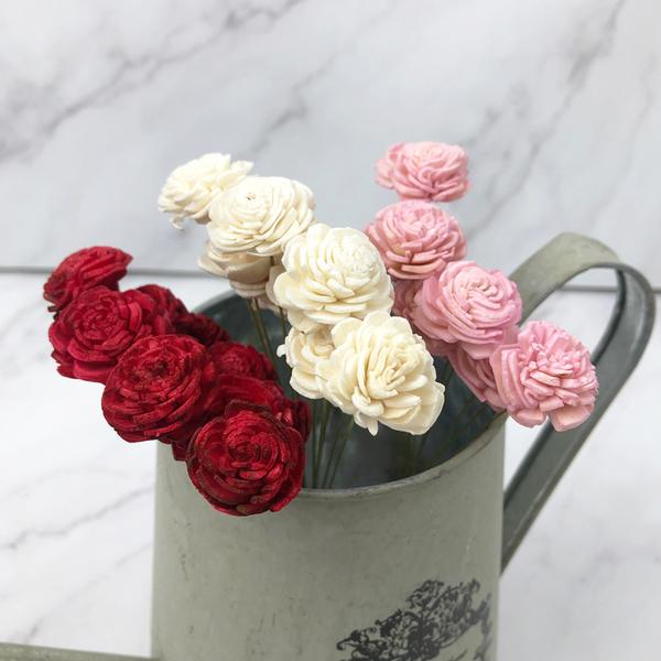 日本進口大地農園 32084 不凋花材索拉花通草花太陽玫瑰-乾燥花圈 乾燥花束 花禮擴香 情人節花束