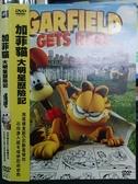 挖寶二手片-B12-正版DVD-動畫【加菲貓:大明星歷險記】-國英語發音(直購價)