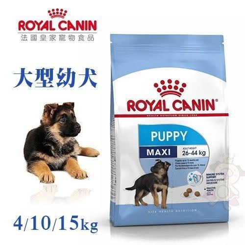 *WANG*法國皇家《大型幼犬AGR32》15KG