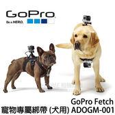GoPro Fetch 寵物專用綁帶 犬用 (24期0利率 免運 台閔公司貨) ADOGM-001 寵物頸帶 狗用 適用適用 HERO6 HERO5