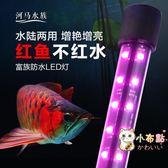 燈管水族箱LED燈水族箱魚缸LED照明燈潛水燈防水紅龍魚鸚鵡羅漢魚紅色專用T8燈管xw