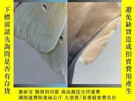 二手書博民逛書店The罕見Art Of Seeing, (7th Edition)Y255562 Paul J. Zelans