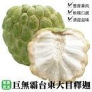 【果農直送-巨無霸大顆】 台東大目釋迦x1盒(7-9顆/10台斤±10%)