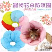 寵物脖圍 寵物花朵防咬圈 【L號】 花朵脖圍 伊莉莎白圈 寵物保護套 脖圍 保護頸圈 防舔 防咬圈