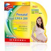 孕哺兒 高單位微藻DHA 軟膠囊 30粒