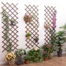 植物爬藤架懸掛