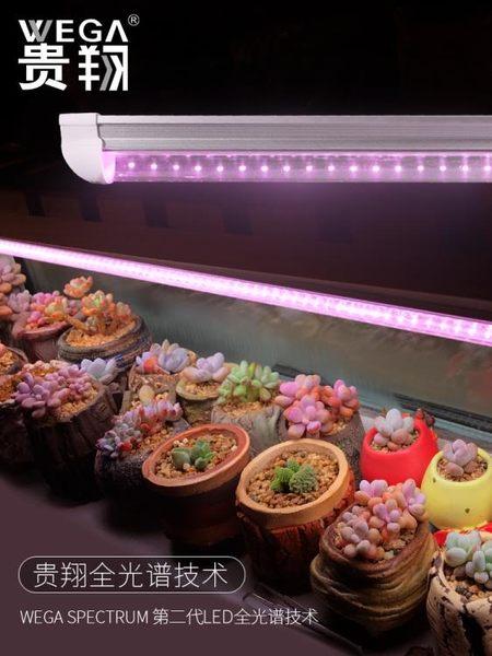 貴翔 多肉補光燈上色全光譜LED蘭花卉育苗食蟲草仿太陽植物生長燈 MKS免運