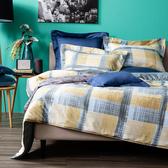 HOLA 賽維拉絲磨毛床包兩用被組 厚款 雙人