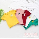寶寶短袖t恤2019夏季新款韓版潮女童半袖木耳邊彈力坑條上衣純棉