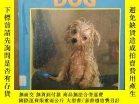 二手書博民逛書店Dog罕見(Caring For Your Pet)Y269331 Jill Foran Weigl Publ