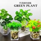 仿真植物假玻璃擺件客廳辦公室桌面小盆栽室...