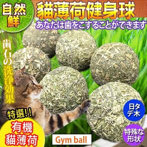 【zoo寵物商城】 自然鮮系列》貓薄荷健身球貓玩具NF-011