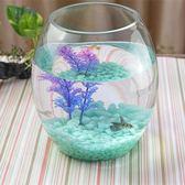 創意水族箱生態圓形玻璃金魚缸 大號烏龜缸 迷你小型造景水培花瓶 艾尚旗艦
