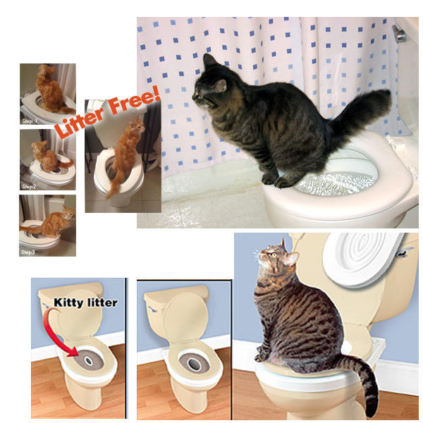 *KING WANG*CitiKitty《貓咪馬桶訓練套件》教愛貓用馬桶,省錢省力,不再買貓砂